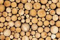 Pine Timber Background Royalty Free Stock Images - 32353439