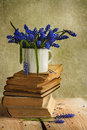 Bouquet Hyacinth Flowers Books Vintage Wooden Royalty Free Stock Photo - 32354875