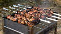 Meat Kebabs Grilling Over A Barbecue Fire Royalty Free Stock Photo - 32369905