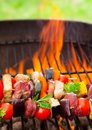 Meat On Grill Royalty Free Stock Photography - 32398367