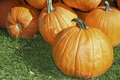 Pumpkins Royalty Free Stock Photography - 3248877