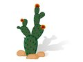 Prickly Pear Stock Image - 32404631