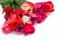 Bunch Of Red And Pink Tulips Over White Stock Photography - 32418682