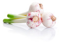 Three Bulbs Of Fresh Garlic Isolated On White Background Royalty Free Stock Photography - 32439227