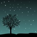 Tree And Stars Royalty Free Stock Image - 32503896
