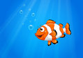 A Sea With A Nemo Fish Royalty Free Stock Images - 32521639