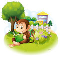 A Monkey Reading A Book Near The Plants With Flowers Stock Photography - 32521772