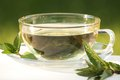Mint Tea Royalty Free Stock Image - 32546536