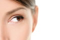 Eye Close Up - Brown Eyes Looking To Side On White Royalty Free Stock Image - 32562936