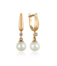 Pair Of Gold Earrings With Diamonds And Pearls / Isolated Royalty Free Stock Images - 32588369