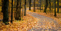 Autumn Walk Way Stock Images - 3262874