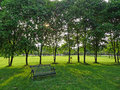 An Iron Bench With Trees Stock Photos - 32739123