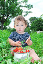 The Garden Beds Near The Little Girl Is Sitting, And Near It Is Stock Photo - 32767770