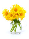 Yellow Flowers In A Pitcher Stock Images - 32794954