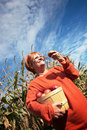 Woman With Apples Stock Photo - 3288020