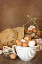 Bowl Of Eggs Stock Image - 32813701