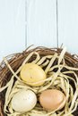 Nest Eggs Royalty Free Stock Images - 32839769