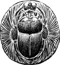 Scarab Stock Images - 32870724