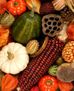 Autumn Decorations Royalty Free Stock Images - 3295939