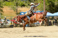 Bronc Riding Royalty Free Stock Photos - 32955498