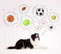 Cute Dog With Balls In Thought Bubbles Royalty Free Stock Photo - 32997625