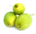 Teasel Gourds Stock Images - 33000644