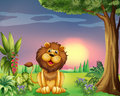 A Happy Face Of A Lion Stock Images - 33097994