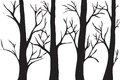 Silhouettes Of Trees Royalty Free Stock Image - 33106786