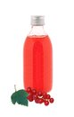 Close Up On A Medicine Bottle With Red Syrup And Fresh Currant Royalty Free Stock Image - 33159126