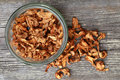 Dried Chanterelle Mushrooms Royalty Free Stock Photography - 33236887