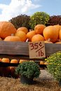 Pumpkins For Sale Stock Photography - 3336882