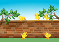 A Wall With Five Ducklings Royalty Free Stock Photography - 33314487
