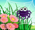 A Spider Web At The Garden Royalty Free Stock Photography - 33315897