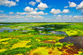 The Colourfull Marsh Royalty Free Stock Images - 33316879