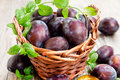 Basket Of Plums Stock Images - 33322924