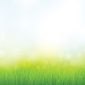 Green Grass Royalty Free Stock Photography - 33361357
