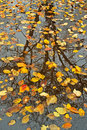 Autumn Reflections Stock Photography - 3340482