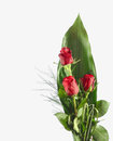 Red Rose Bouquet Stock Images - 33460374