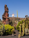 Cactus Garden In Lanzarote, Canary Islands. Stock Photo - 33462350