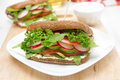 Sandwich With Cottage Cheese, Greens And Vegetables Royalty Free Stock Image - 33471356