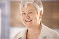 Portrait Of Elderly Woman With White Hair Stock Photography - 33471632