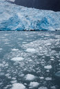 Blue Glacier And Calving Ice In The Alaskan Ocean Waters Royalty Free Stock Photo - 33500925