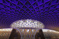 Kings Cross Station Roof Royalty Free Stock Photo - 33536925