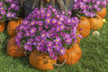 Fall Display Stock Images - 33575534
