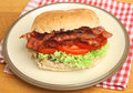 BLT Or Bacon, Lettuce & Tomato Roll Royalty Free Stock Image - 33624306