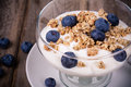 Yogurt With Granola And Blueberries. Royalty Free Stock Images - 33641609
