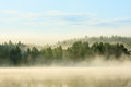 Foggy Forest And Lake At Dawn Stock Image - 33646951
