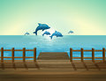 Six Dolphins Diving Stock Photography - 33691282