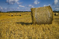 Golden Hay Bales In Polish Countryside Stock Images - 33694504