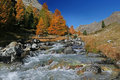 Swiss Autumn River Royalty Free Stock Image - 3377976